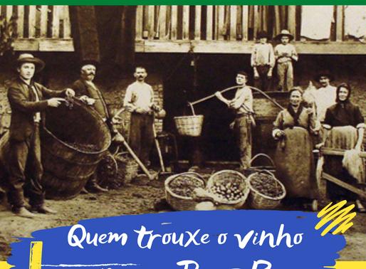 10 curiosidades sobre o vinho brasileiro