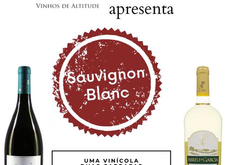 Rótulo da semana: Ami Sauvignon Blanc | Abreu Garcia