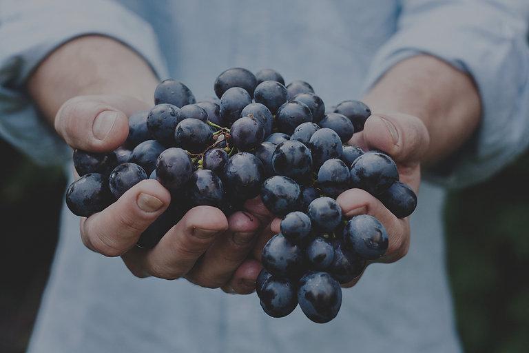 Grapes_edited.jpg