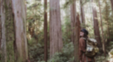 redwoods_forest_trees_hike_portraits-3.j