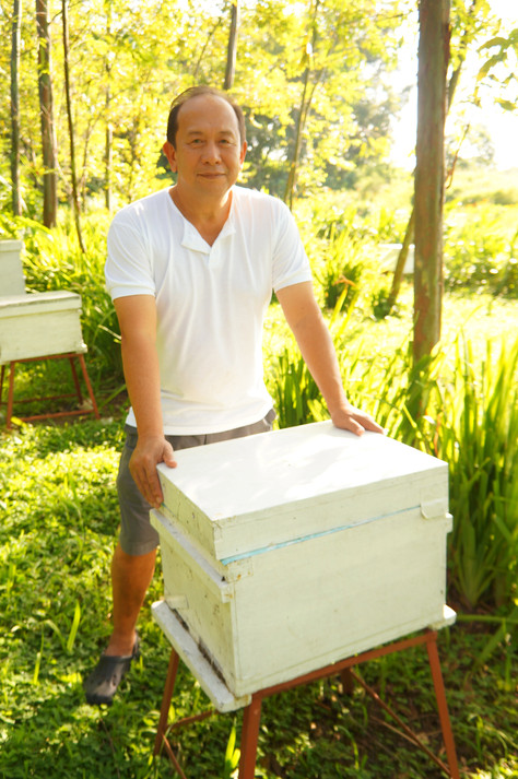 HOW MY BEES CURED MY STROKE PARALYSIS