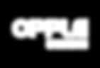 asa sponsor logo - web-05.png