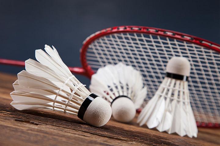 badminton promo.jpg