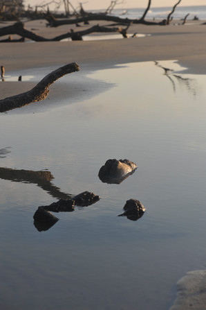 HUNTING ISLAND BEA