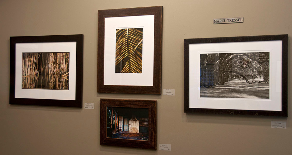 Maye River Galleries