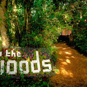 In To The Woods Festival
