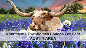 For Rent in Austin Area