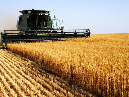 Les grands axes des politiques agricoles régionales françaises