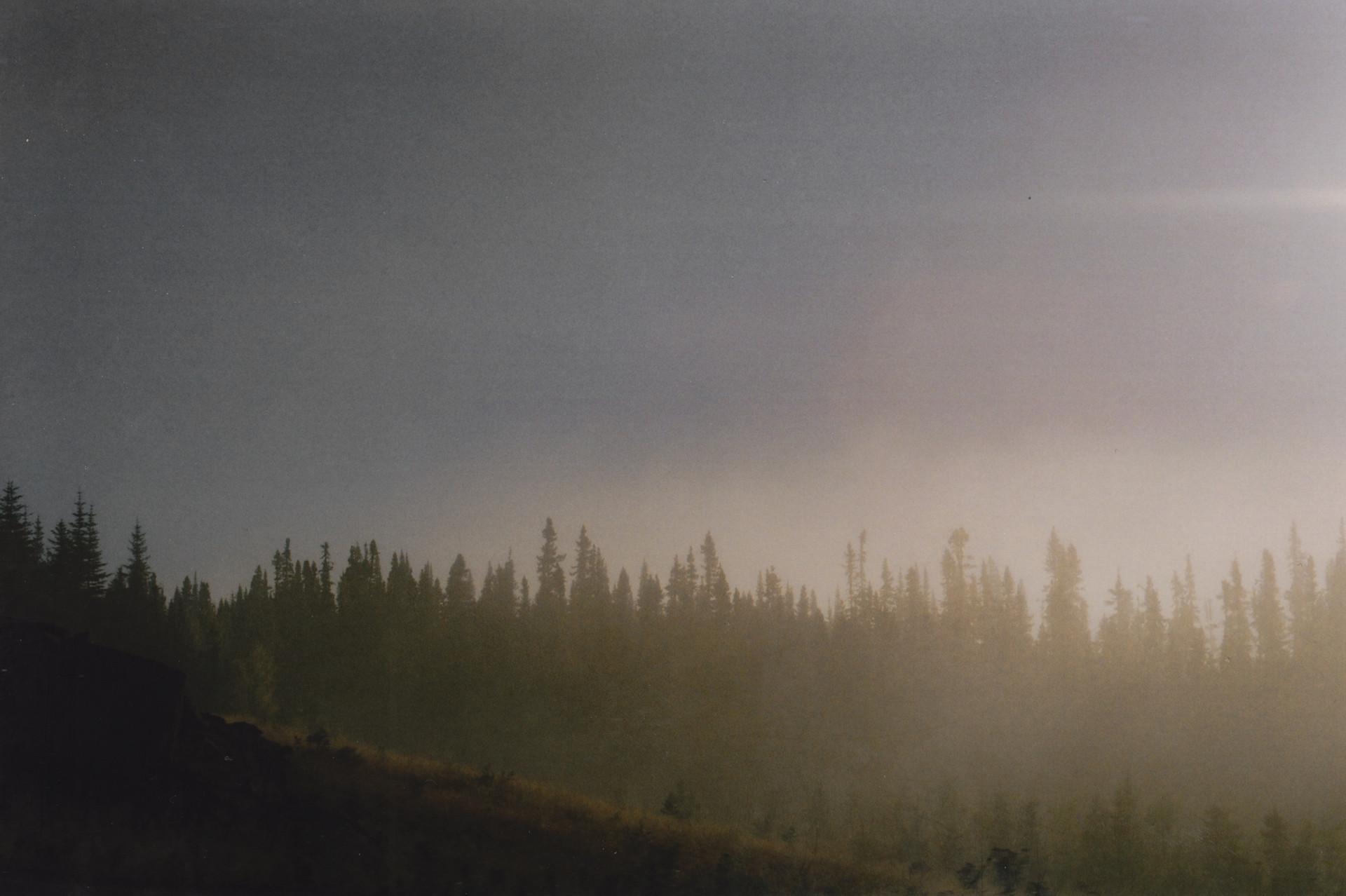 haze, 2019.jpg