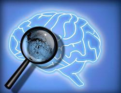 cerebro-huella-forense