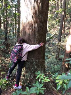 取材記 養沢の森へ