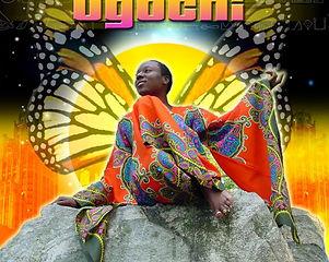 African Buttafly Cover Art.JPG