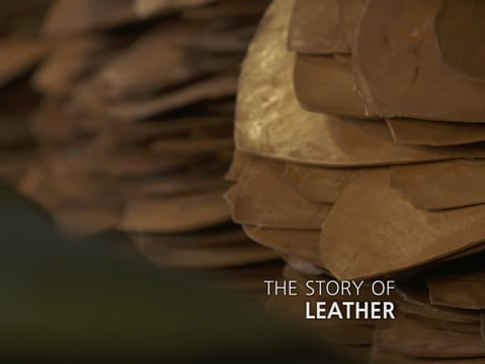 STORY OF LEATHER