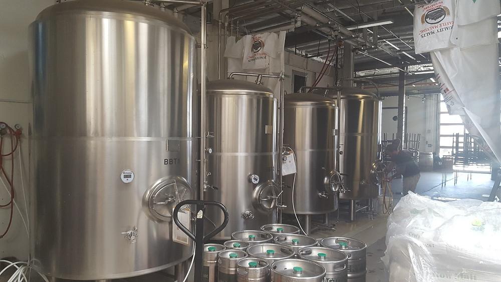 Brewer kegging beer