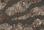 Harlech quartz by Cambria.