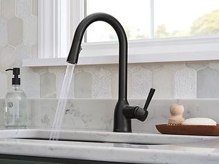 Kitchen.Faucet.Moen.jpg