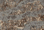 Helmsley quartz by Cambria.