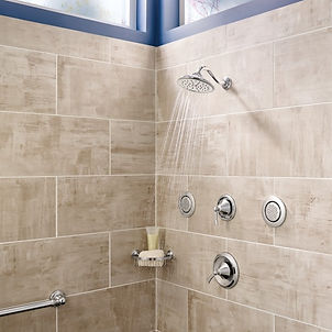 Moen.ShowerHead.jpg