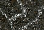 Ellesmere quartz by Cambria.