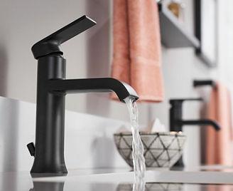 Moen.BathSink.jpg