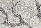Seagrove quartz by Cambria.