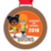 Digitale schoolpoortmedaille Brons 2018.