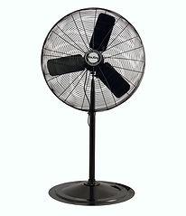 30 inch Pedestal Fan.jpg
