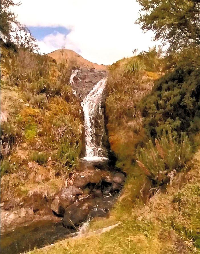 Cucheros Lagoon Route
