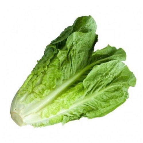 Lettuce Cos - Each