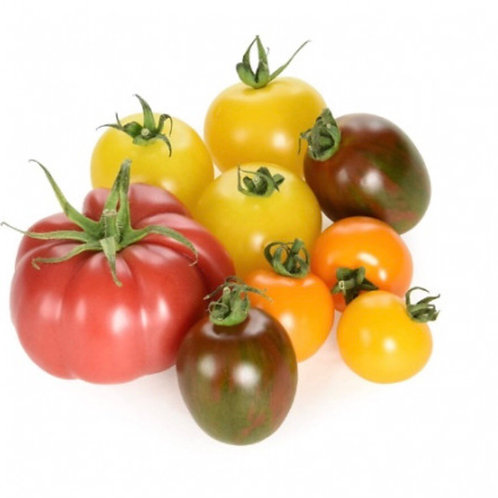 Mixed Heritage Tomatoes - 250g