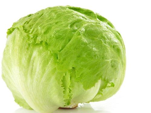 Lettuce Iceberg - Each