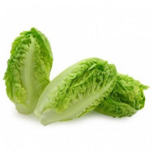 Lettuce Little Gem - Pkt 2