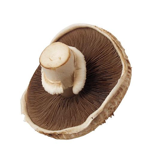 Mushroom Portobello - 500g