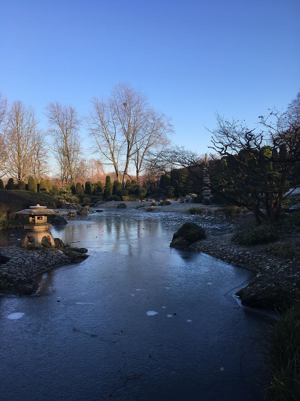 Rheinaue-Japanischer Garten
