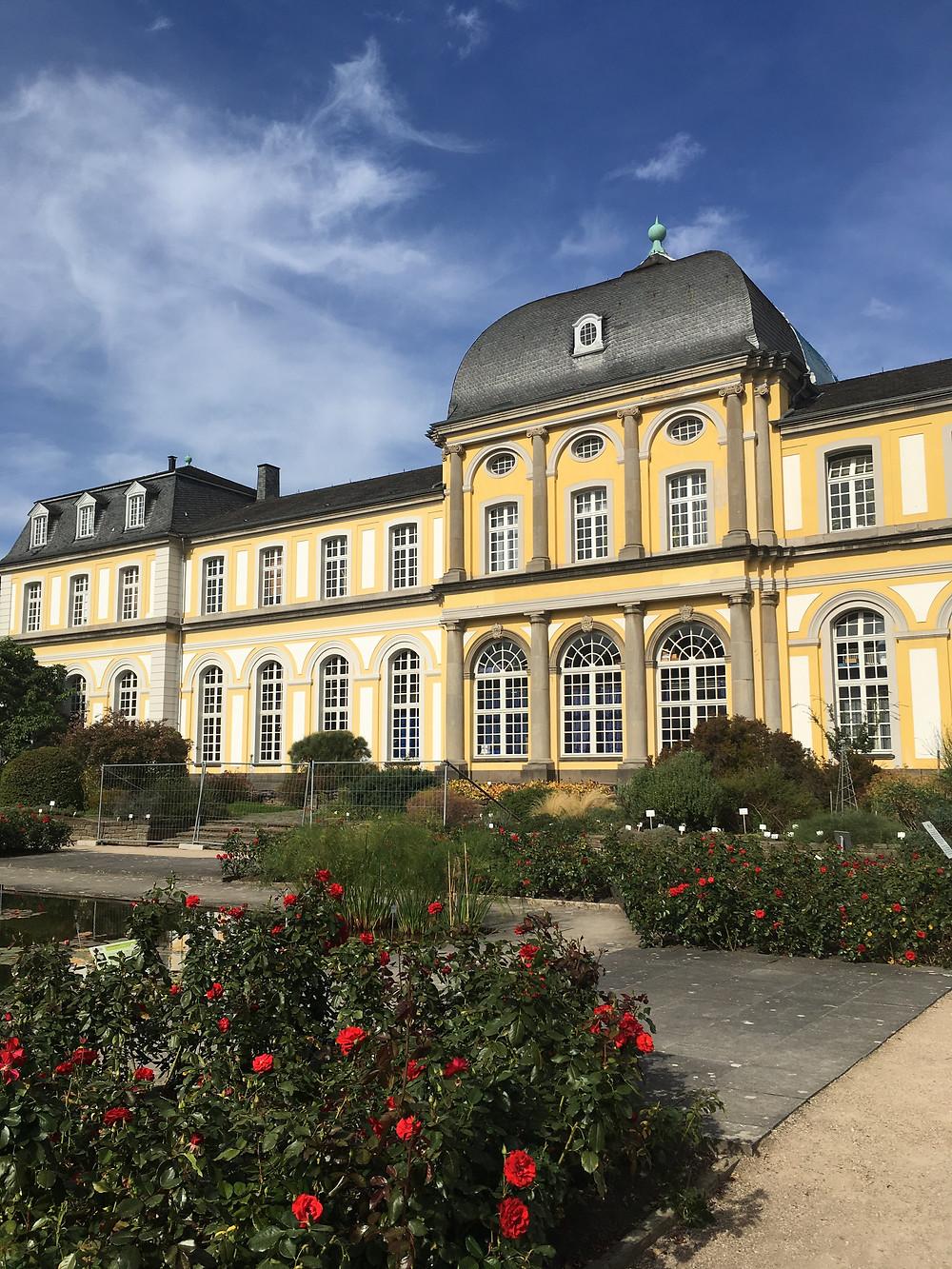 Popplesdorf Schloss - Image by C. Venery
