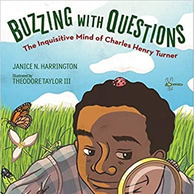 Buzzing With Questions  (Hardcover)