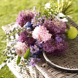 next flowers  june 19183473.jpg