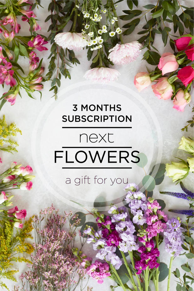3 months subscription 1c.jpg
