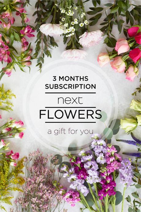 3 months subscription 1c.jpg
