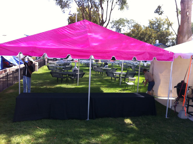 20 x 20 Pink Tent