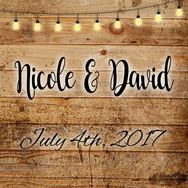 Nicole and David's Wedding Party