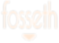 LOGO FOSSETH sans contour.png