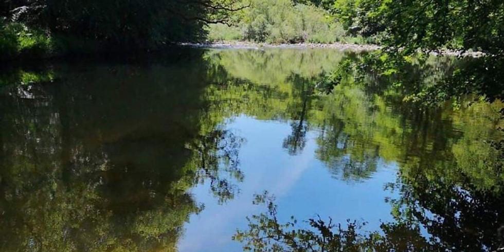 Dartmoor Walk and Dip With Nathan