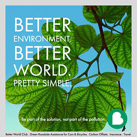 Better World Club, Alamedia Group, Marc Eisenman