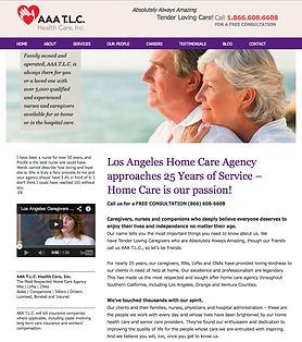 Alamedia Group, Marc Eisenman, AAA TLC Health Care