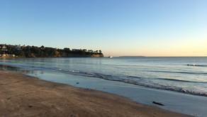 Browns Bay beach closed