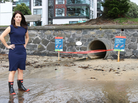 Inquiry into Auckland Beach water quality