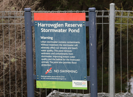 Local stormwater ponds