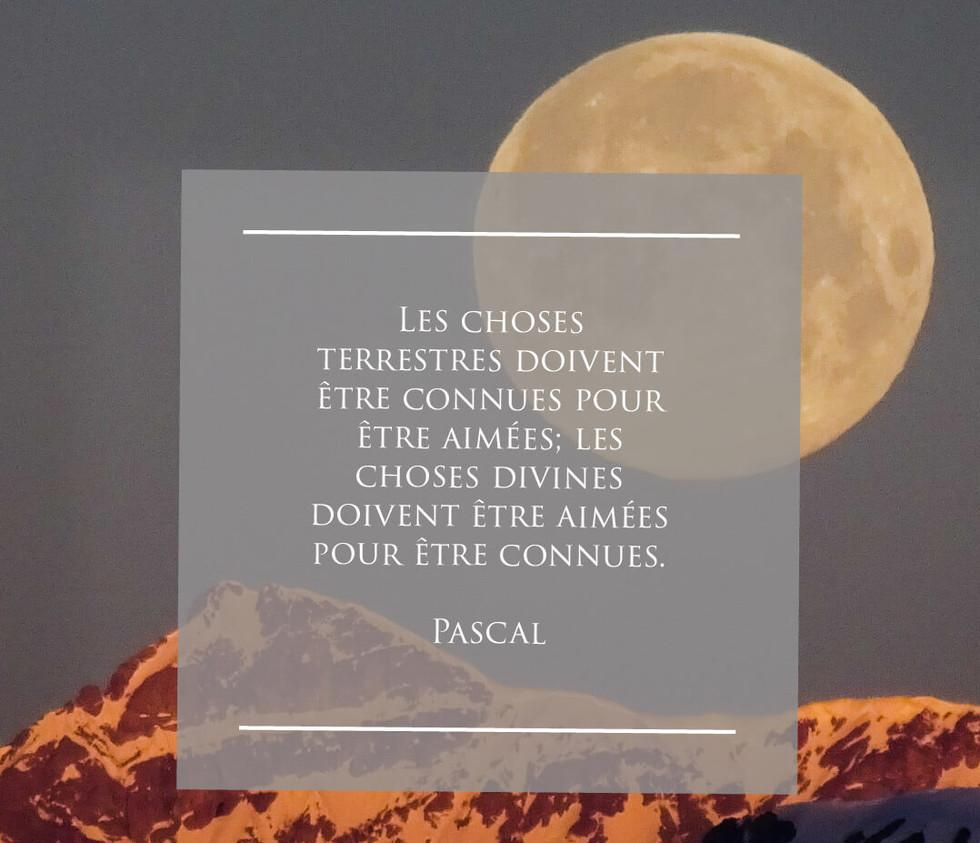 Pascal.jpg