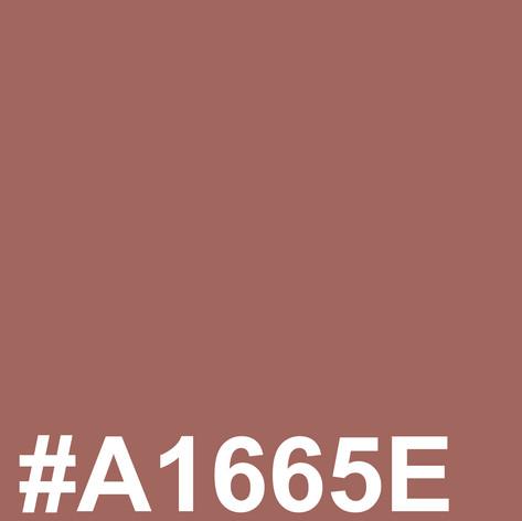 #A1665E